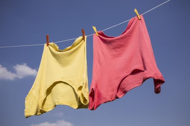 ベランダで快適に洗濯物を干す!虫除けネットなどの防虫対策