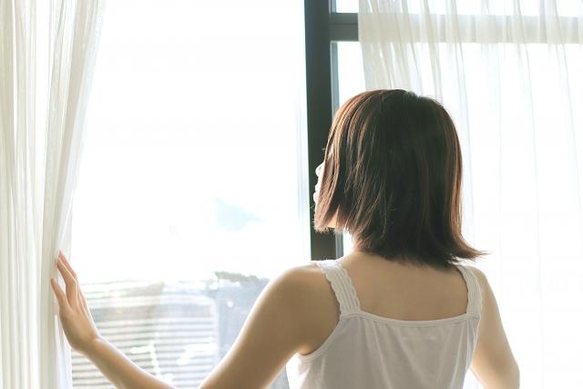 窓の網戸はどう選ぶ?窓の開け方次第でも虫が侵入は防げる?