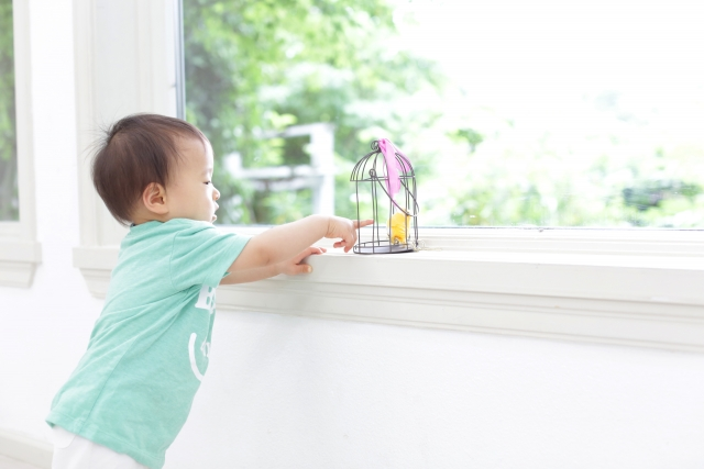 窓の遮光は100均グッズで簡単お手軽にできる!