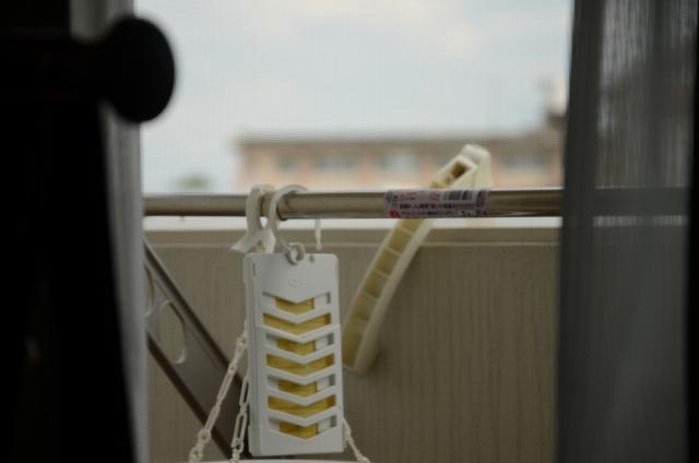 虫の侵入を防ぎたい!窓や網戸にできる虫除けの方法は?