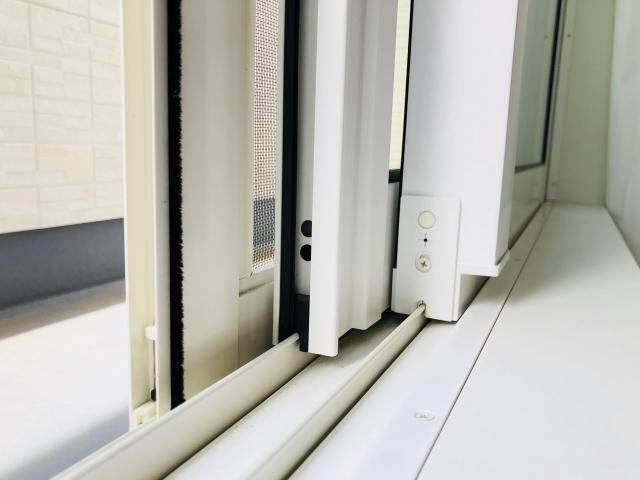 窓の隙間から虫を侵入させないためには?方法や対策を伝授!
